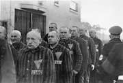 Holocaust Remembrance Day–January 27th