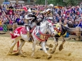 Renaissance Festival: A Revel for Everyone