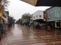 Usually it's 'Brrrr!' in Burlington, but today, just wet!