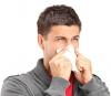 When Every Season is Allergy Season